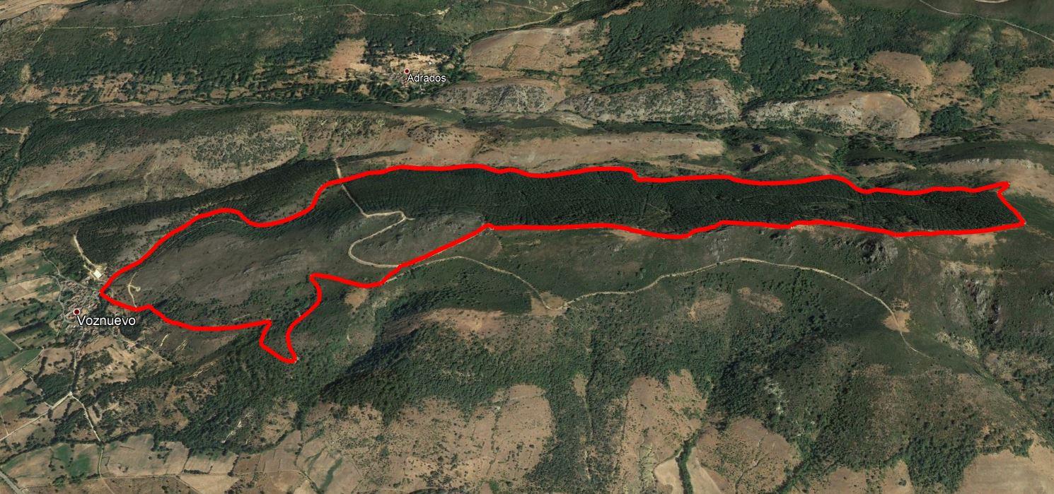SL-LE 6 Ruta por el Pinar de Villares