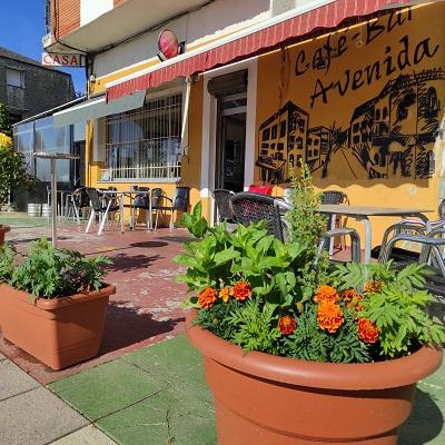 Bar-Café La Avenida